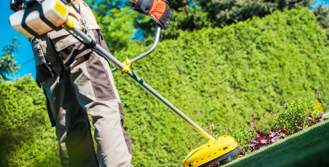 Benötigen Sie einen deutschen Fachmann für Gartenarbeiten?